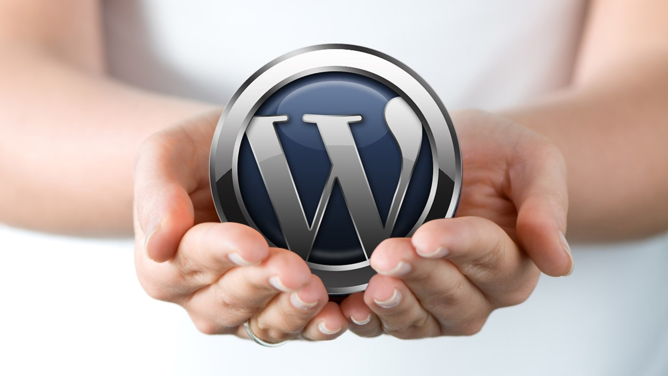 WordPress_www.websquaresolutions.com